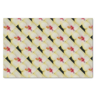 Stamen With Yellow Hibiscus Petal Background Tissue Paper