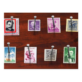 Stamp Collector - My stamp Collection Postcard
