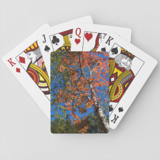 Standard Index Playing Cards Red Fall Leaves