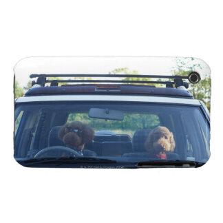 standard poodle 4 Case-Mate iPhone 3 cases