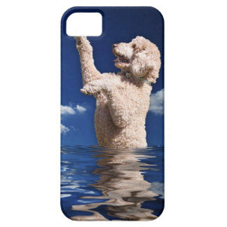 Standard Poodle Reflections iPhone 5 Case