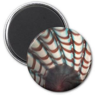 Standard Round Magnet w/ design