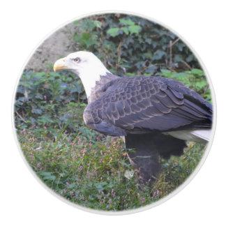 Standing American Bald Eagle Ceramic Knob