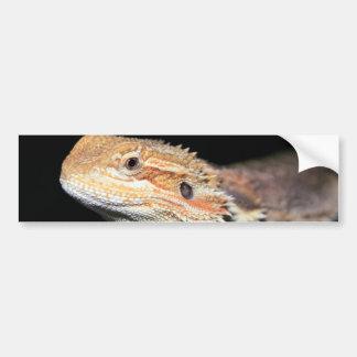 Standing Bearded Dragon Bumper Sticker