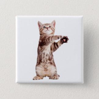 Standing cat - kitty - pet - feline - pet cat 2 inch square button