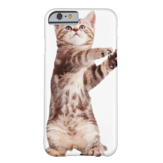 Standing cat - kitty - pet - feline - pet cat barely there iPhone 6 case