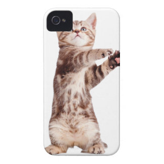 Standing cat - kitty - pet - feline - pet cat Case-Mate iPhone 4 case