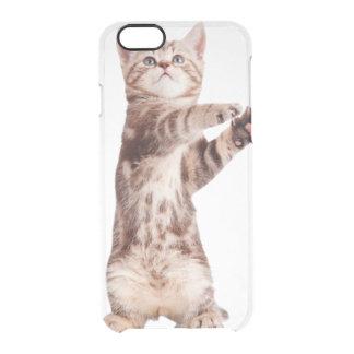 Standing cat - kitty - pet - feline - pet cat clear iPhone 6/6S case