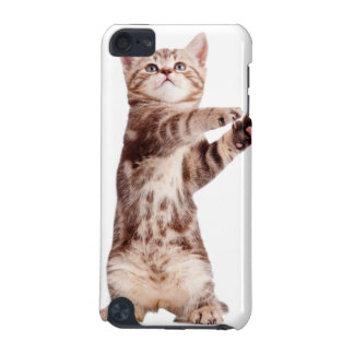Standing cat - kitty - pet - feline - pet cat iPod touch (5th generation) cover