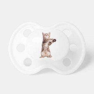 Standing cat - kitty - pet - feline - pet cat pacifier