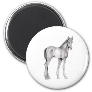 Standing Foal 2 Inch Round Magnet