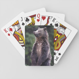 Standing Grizzly Bear Poker Deck