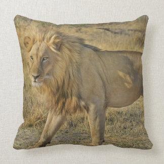 Standing Lion Pillow