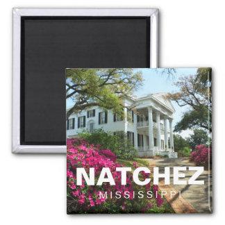 Stanton Hall Natchez, Mississippi souvenir magnet
