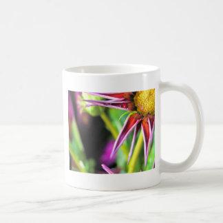 Star Attraction Classic White Coffee Mug