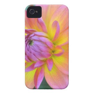Star Bright Case-Mate iPhone 4 Case