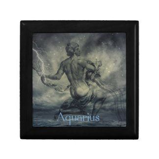 star constellation zodiac astrology aquarius gift box