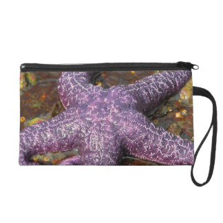 Star Fish Wristlet Purses