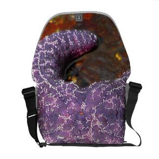 Star Fish Messenger Bags