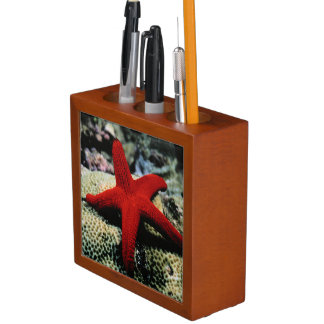 Star Fish | Red Sea Desk Organizer