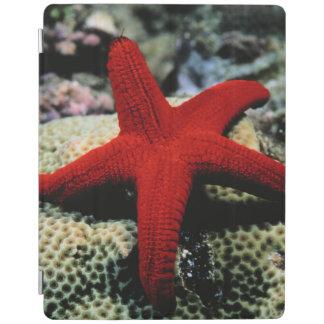 Star Fish | Red Sea iPad Cover