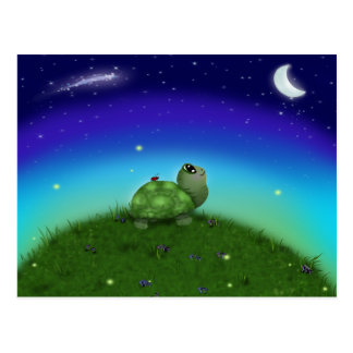 Star Gazing Turtle Postcard