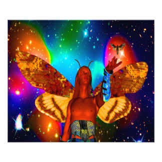 Star Moth Photograph