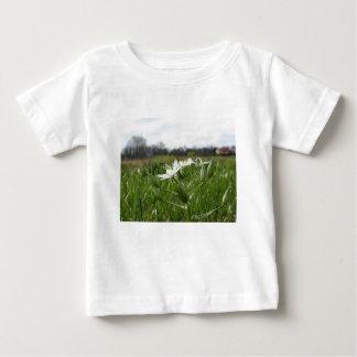 Star of Bethlehem flowers  Ornithogalum umbellatum Baby T-Shirt