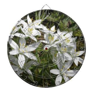 Star of Bethlehem flowers  Ornithogalum umbellatum Dartboard