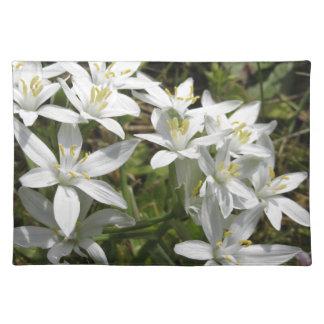 Star of Bethlehem flowers  Ornithogalum umbellatum Placemat