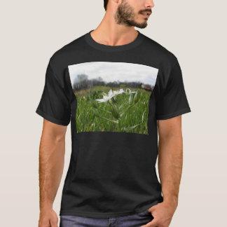 Star of Bethlehem flowers  Ornithogalum umbellatum T-Shirt