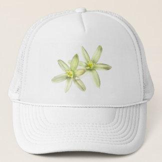 Star of Bethlehem Hat