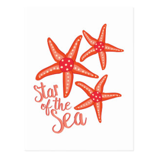Star Of Sea Postcard