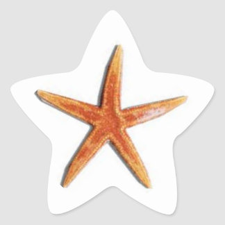 Star shaped starfish sticker