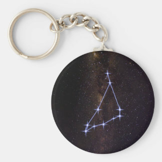 Star Sign Capricorn Keychain