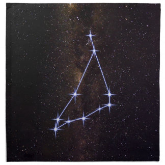 Star Sign Capricorn Napkin