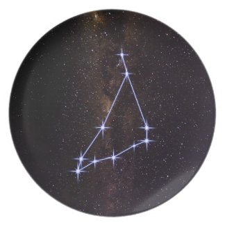 Star Sign Capricorn Plate