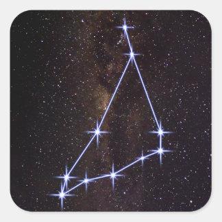 Star Sign Capricorn Square Sticker