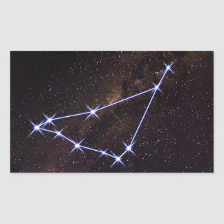 Star Sign Capricorn Sticker