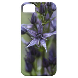 Star swertia (Swertia perennis) iPhone 5 Case