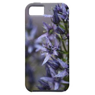 Star swertia (Swertia perennis) iPhone 5 Cover
