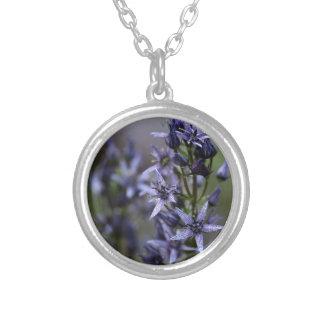 Star swertia (Swertia perennis) Silver Plated Necklace