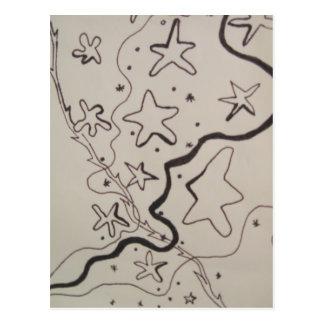 Star Trails Postcard