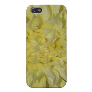 Starburst Dahlia iPhone 4 Case