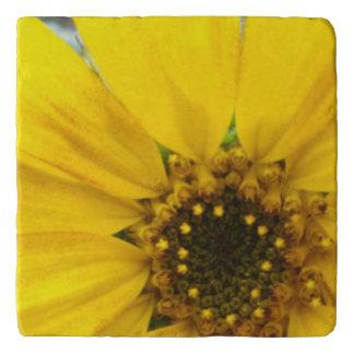 Starburst Sunflower Trivet