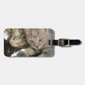 Stardust Kittens Luggage Tag