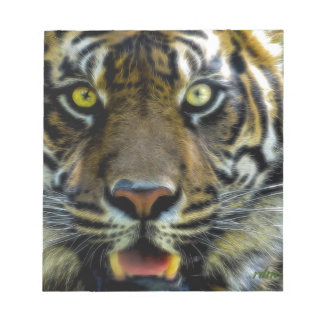 Stared Down By A Tiger Notepads