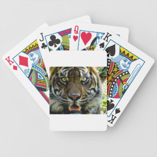 Stared Down By A Tiger Poker Deck