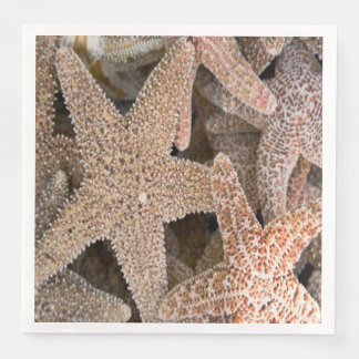 Starfish all around paper napkin