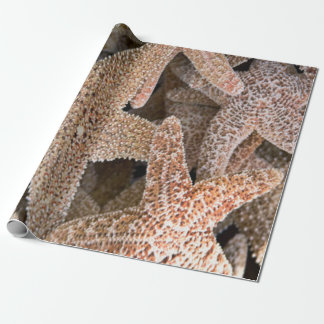 Starfish all around wrapping paper